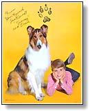 Les chiens célèbres Photo7(small)